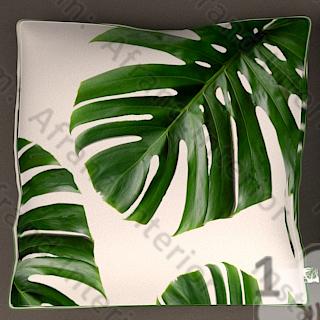 کوسن برگ انجیری یا استوایی سبز